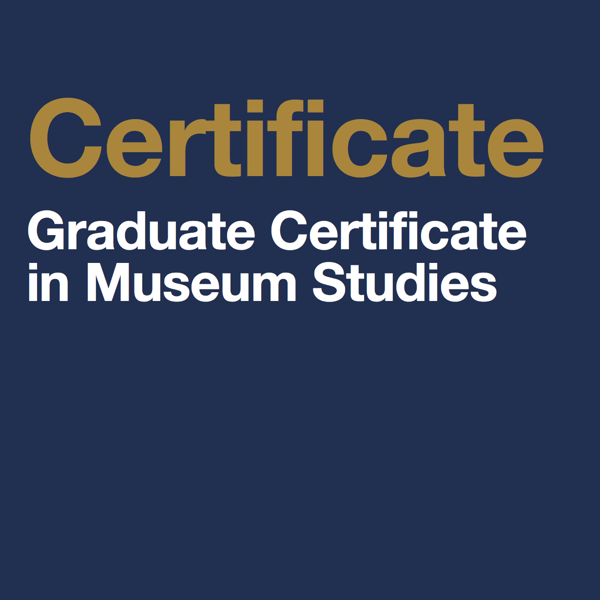 Museum Studies - Non-Degree Program