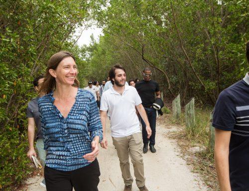 Miami Beach Urban Studios: SEA LEVEL SOLUTION CENTER