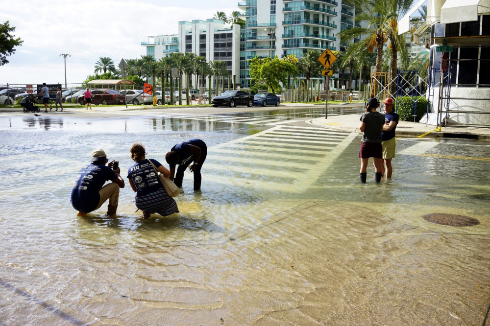 FIU SCJ and MBUS Contribute to Sea Level Solutions Day '19 Through Innovation